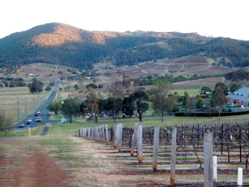 Hunter Valley Winetours